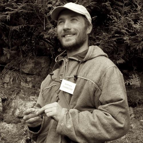 Découverte des plantes sauvages et comestibles avec Anthony Charretier